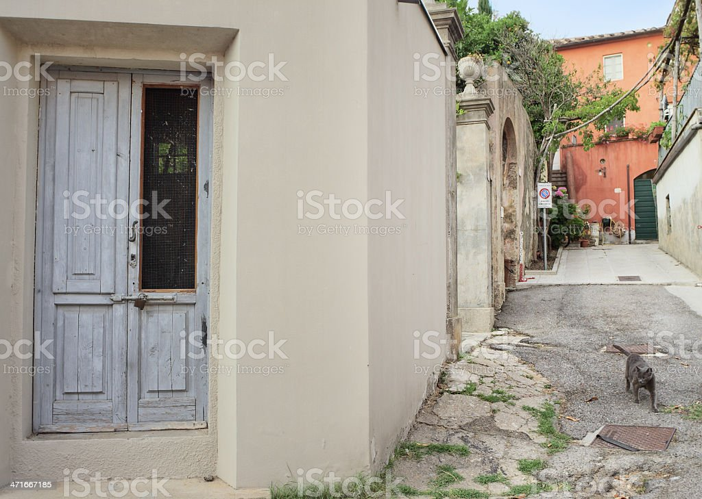 Cat wandering in the village, Italy stock photo