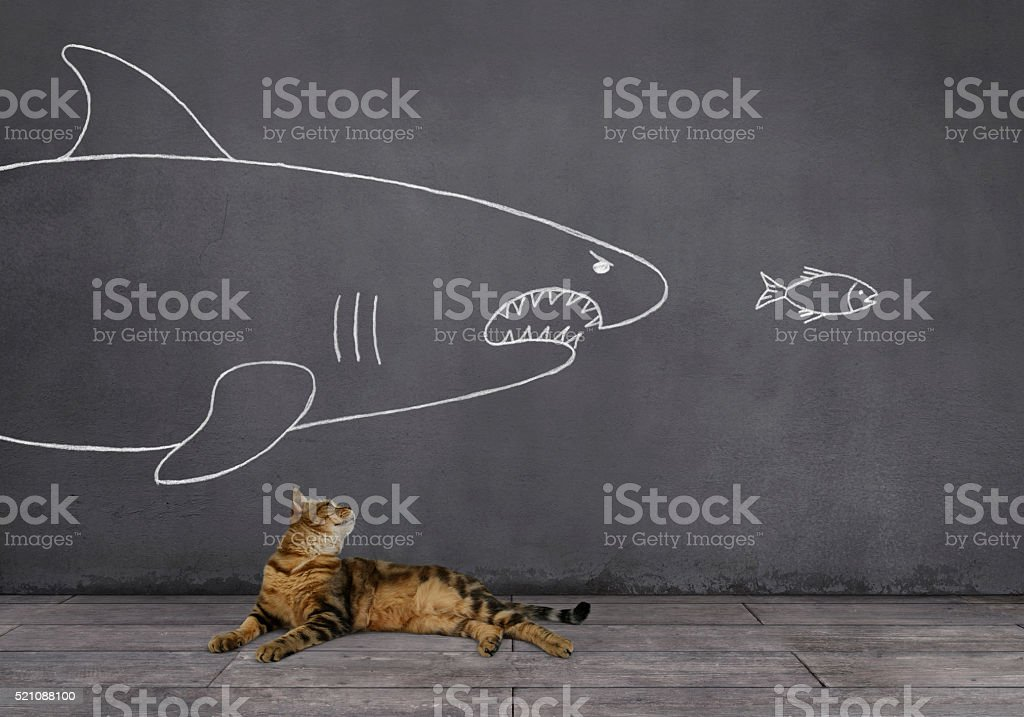 Cat with Shark and Small Fish Sketched on Wall stock photo
