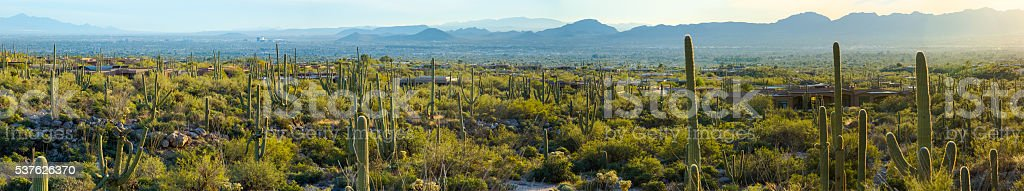 Catalina Mountains Beyond the Expansive Desert stock photo
