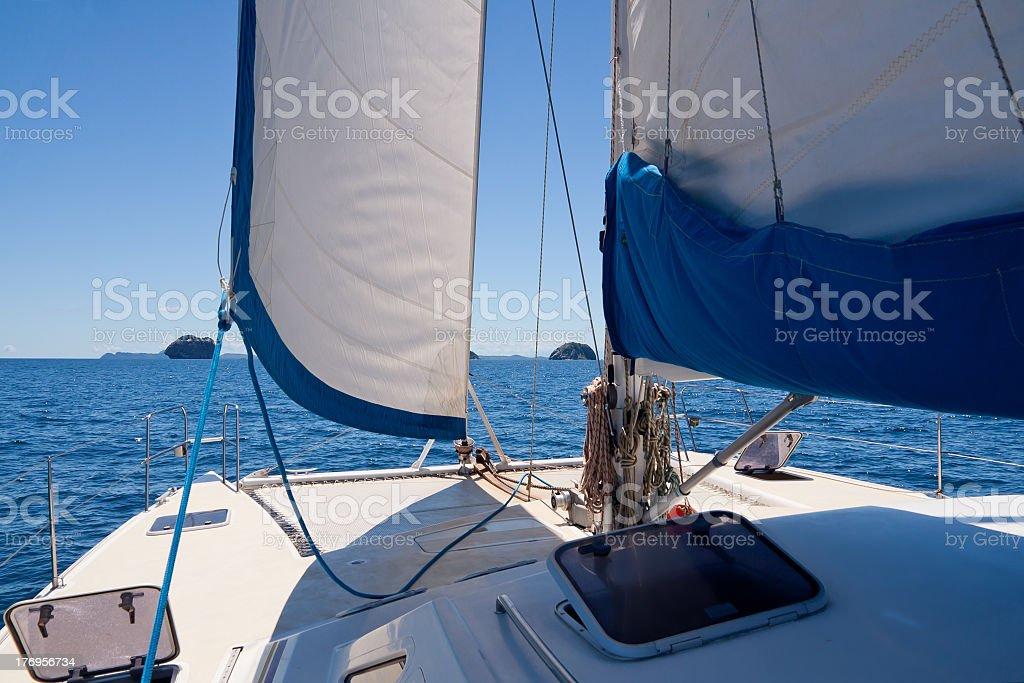 Catamaran stock photo