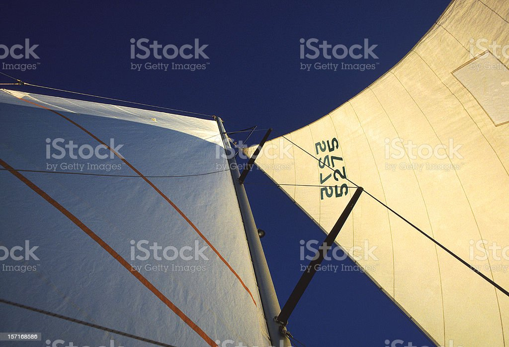 Catamaran Sails at Sunset royalty-free stock photo