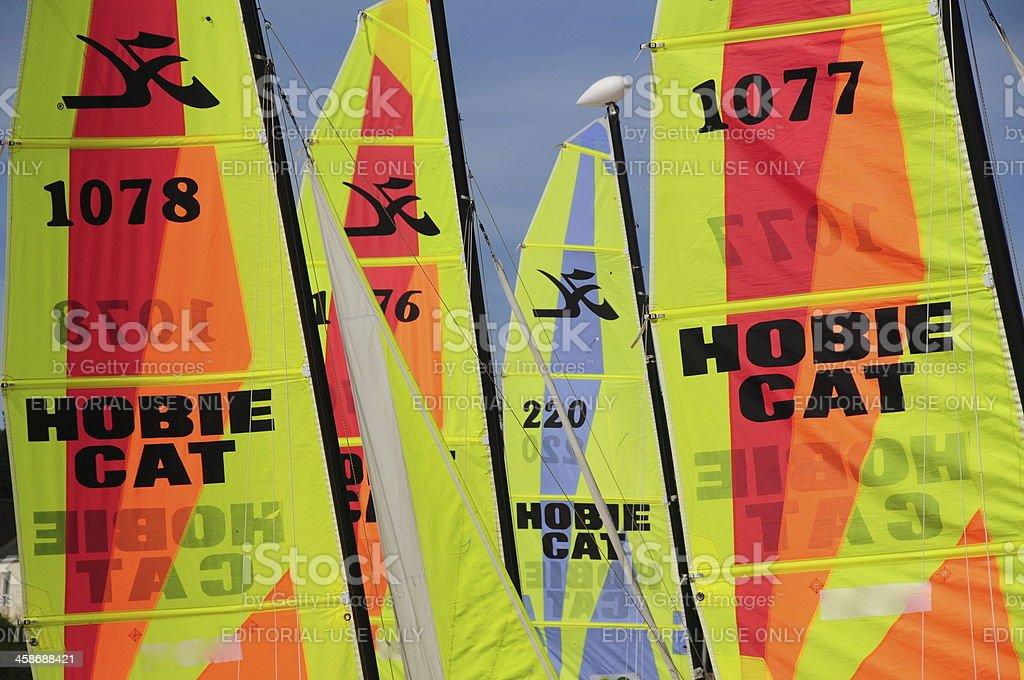 Catamaran sails, U.K. stock photo