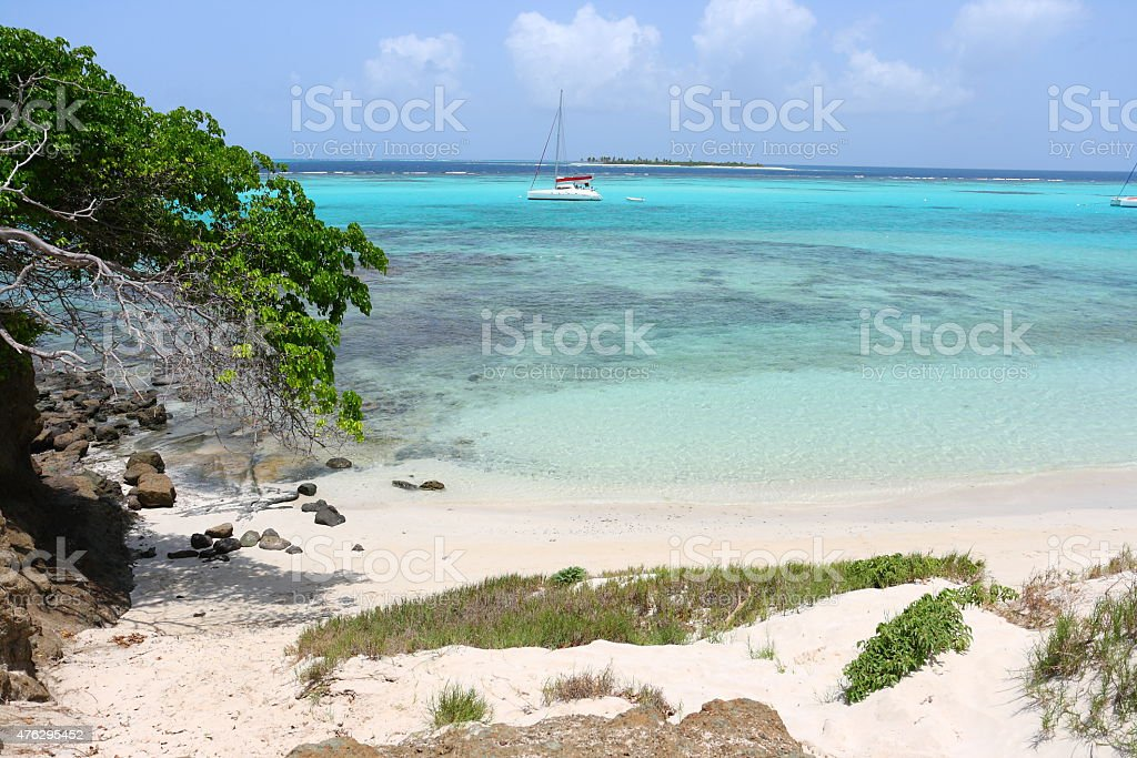 Catamaran Tobago Cays St Vincent and the grenadines stock photo