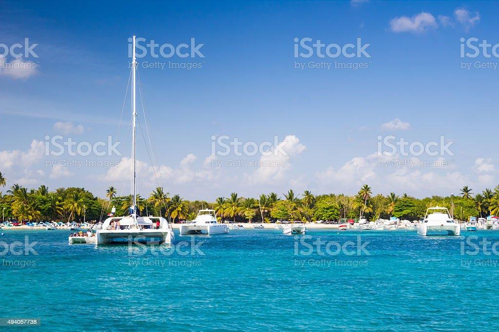 Catamarans in the harbor stock photo