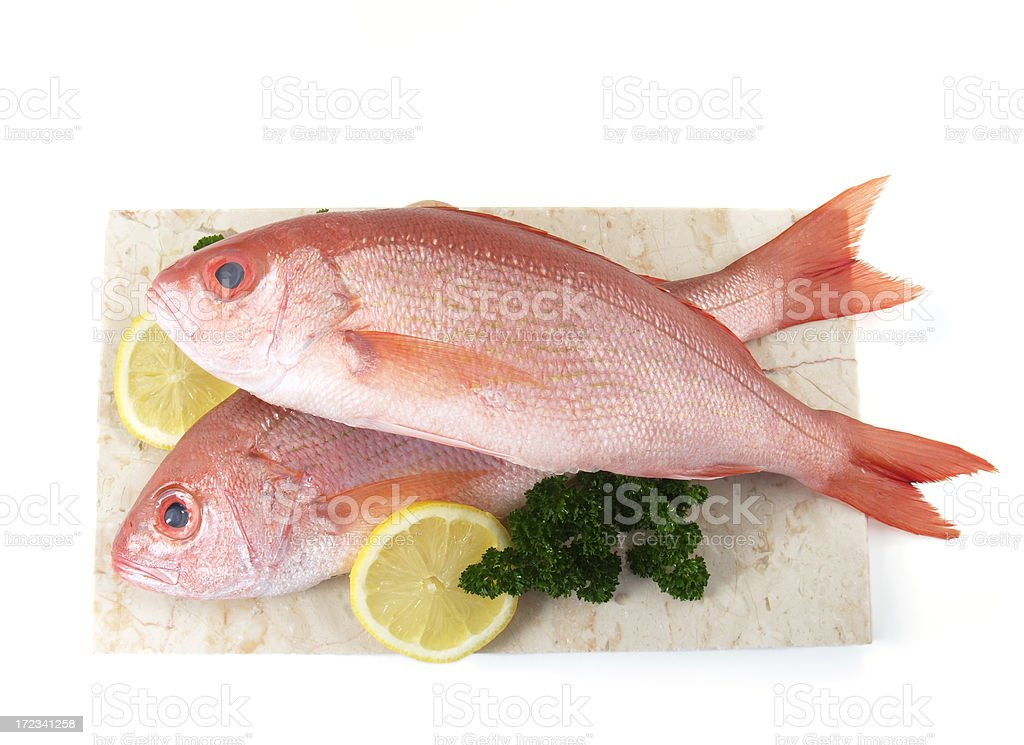 Catch of the day, red snappers with parsley and lemon stock photo