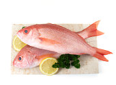 Catch of the day, red snappers with parsley and lemon