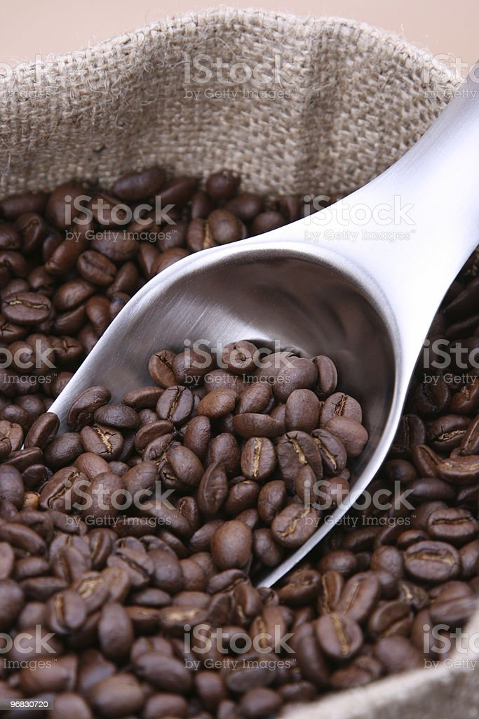 Catch the Coffee Beans stock photo