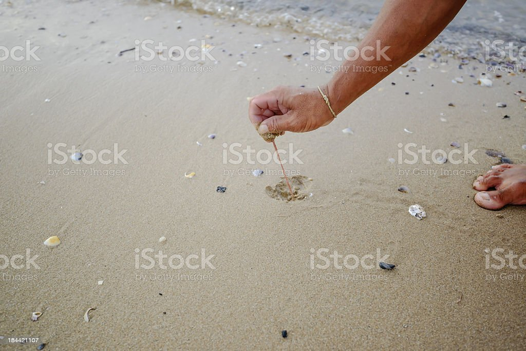 Catch the worm sea royalty-free stock photo