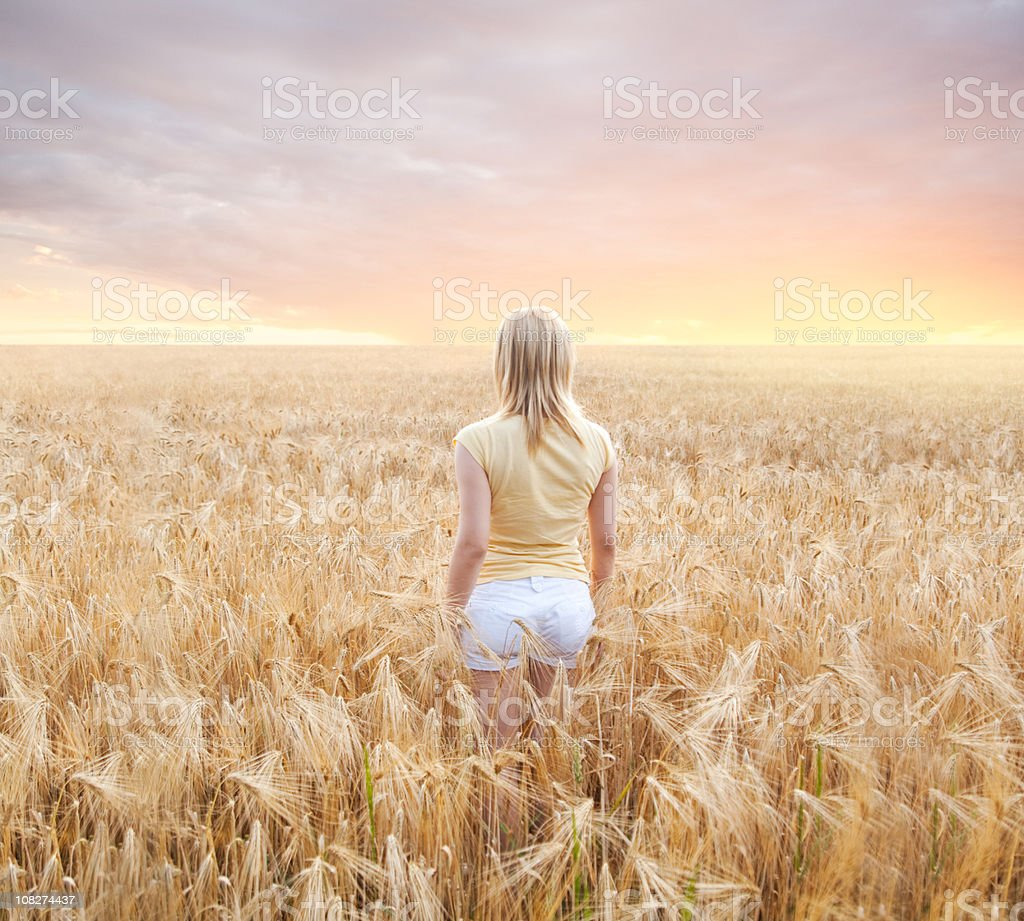 Catcher in the Rye stock photo