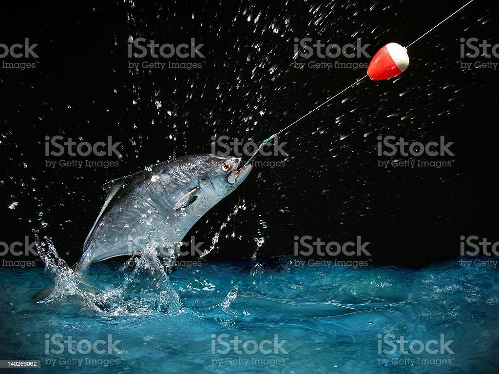 Catching a big fish at night stock photo