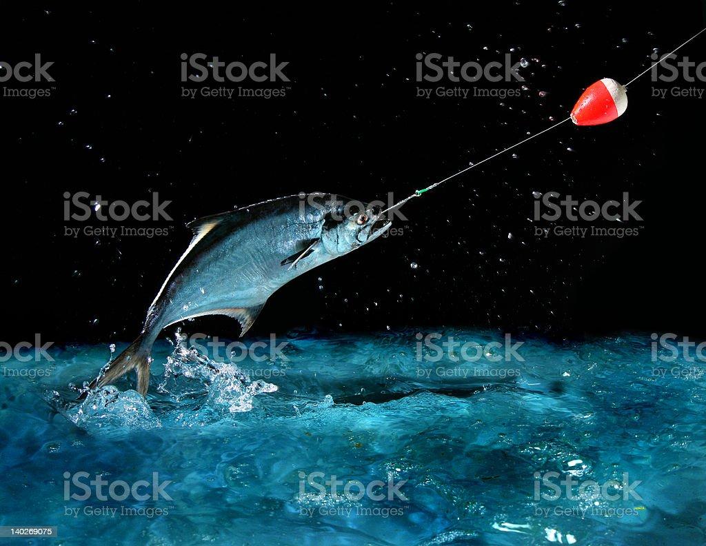 Catching a big fish at night stock photo