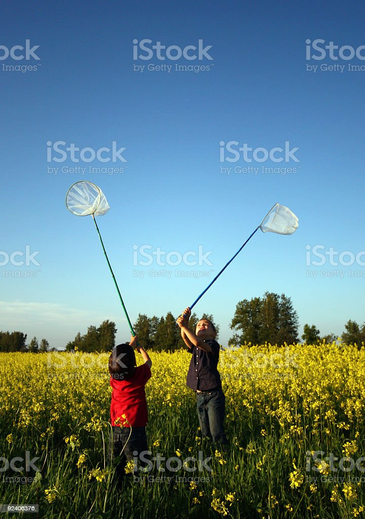 Catching butterflies royalty-free stock photo