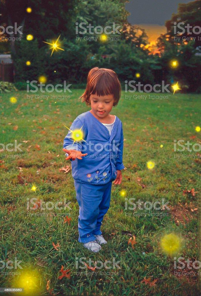 Catching Fireflies stock photo