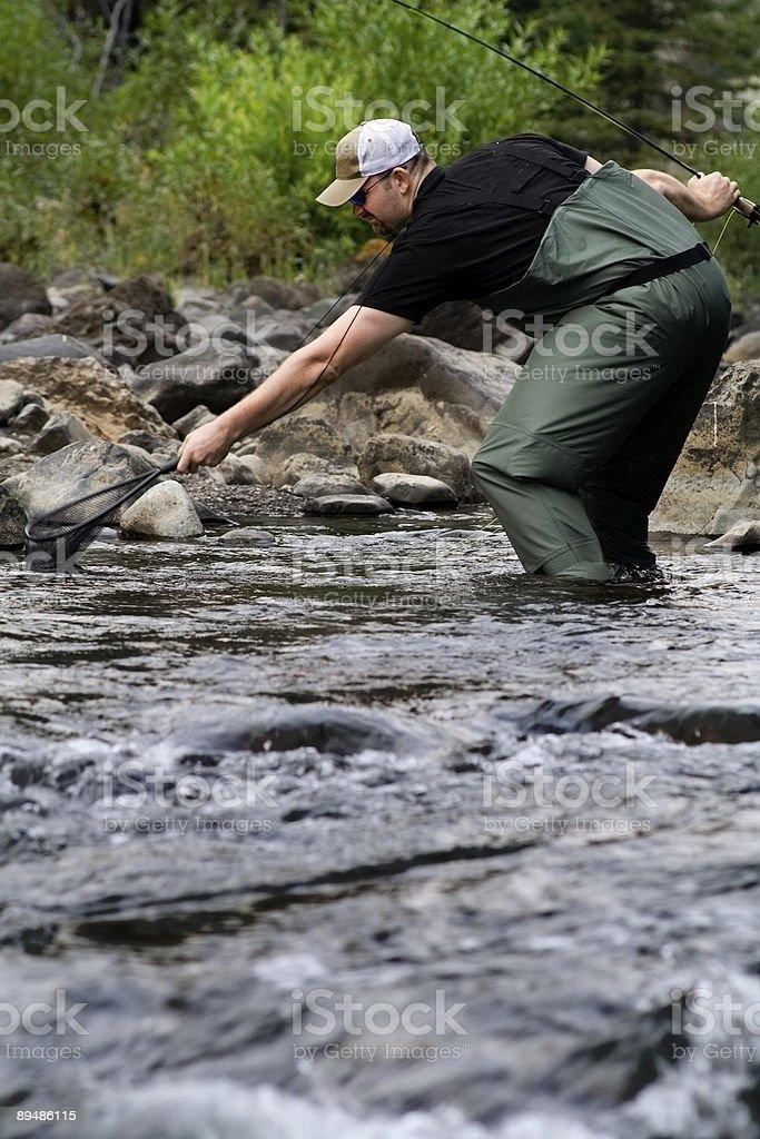 catching fish royalty-free stock photo