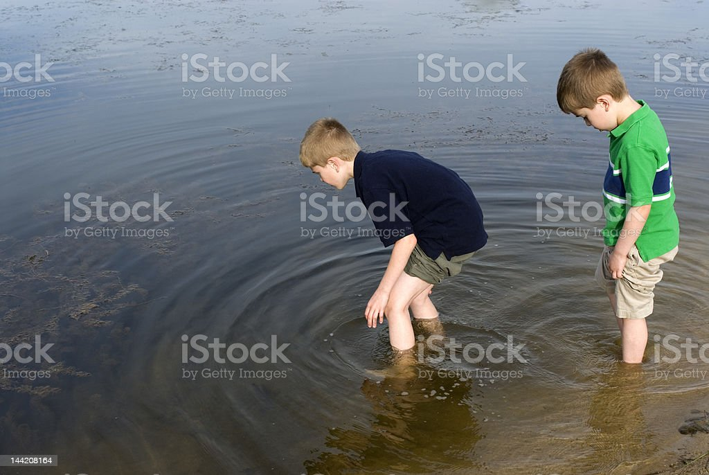 Catching frogs ... in school clothes stock photo