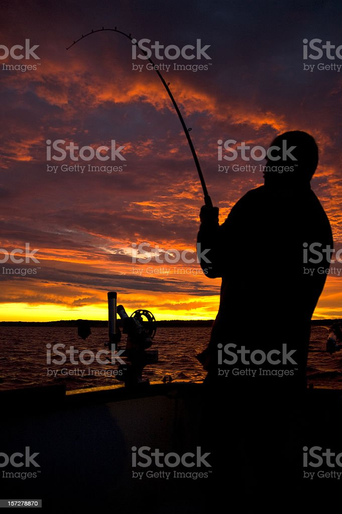 Catching the Big Fish royalty-free stock photo