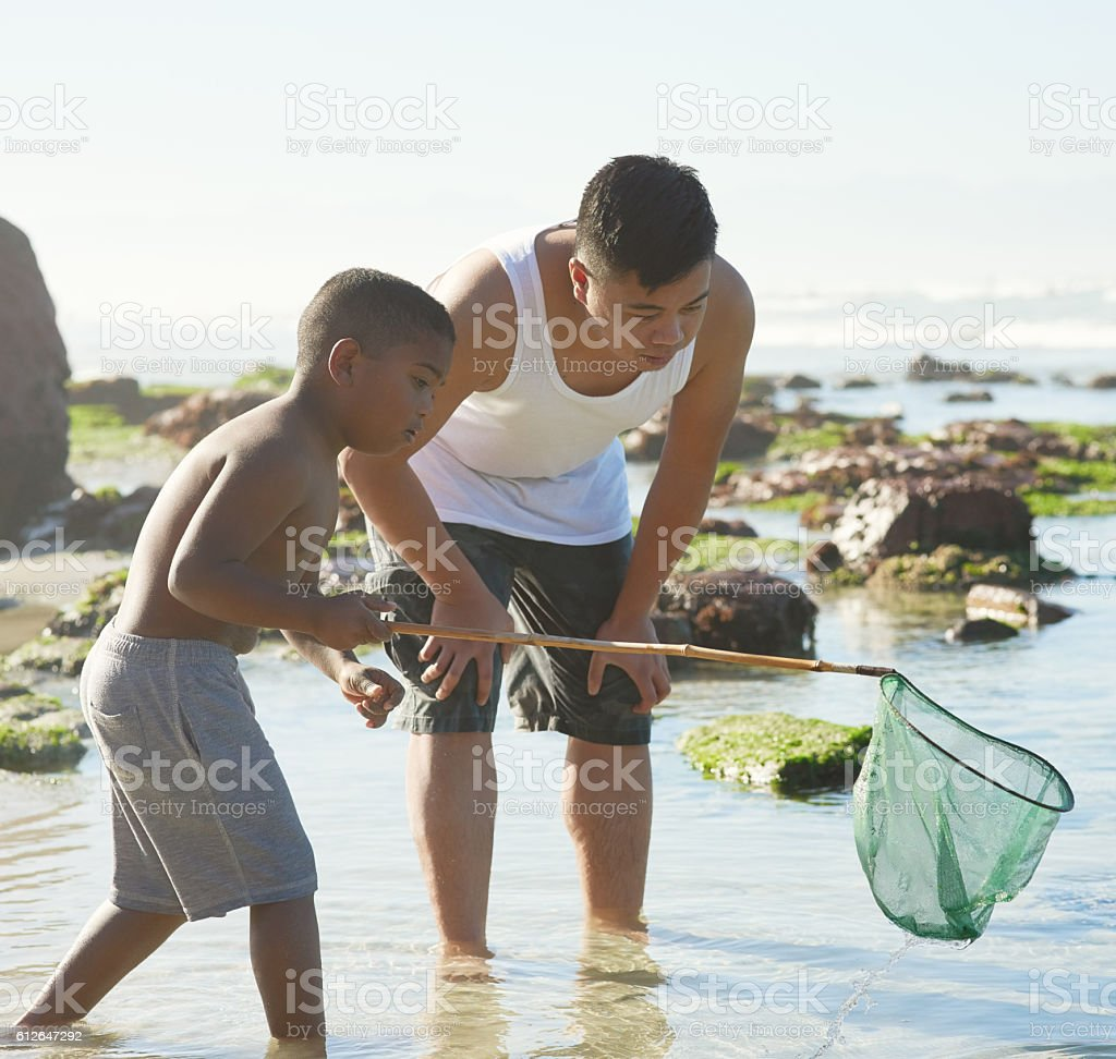 Catching their own supper stock photo