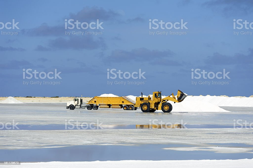 caterpillar at work on salt flat, bonaire royalty-free stock photo