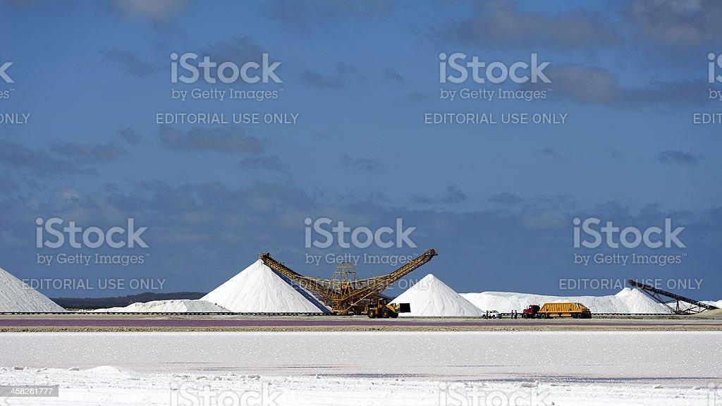 caterpillar at work on salt flat, bonaire royalty-free stock photo