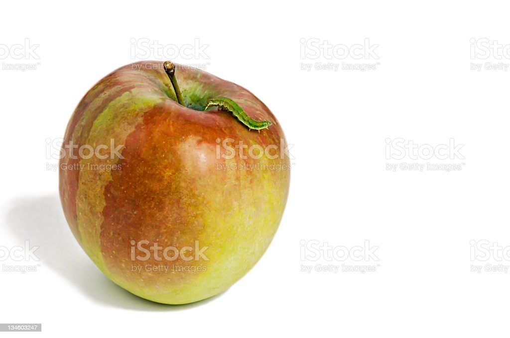 Caterpillar on Red Apple royalty-free stock photo