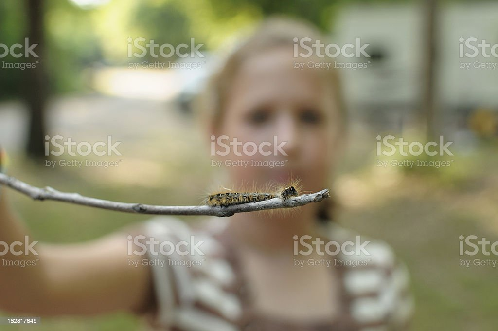 Caterpillar on stick held by girl stock photo