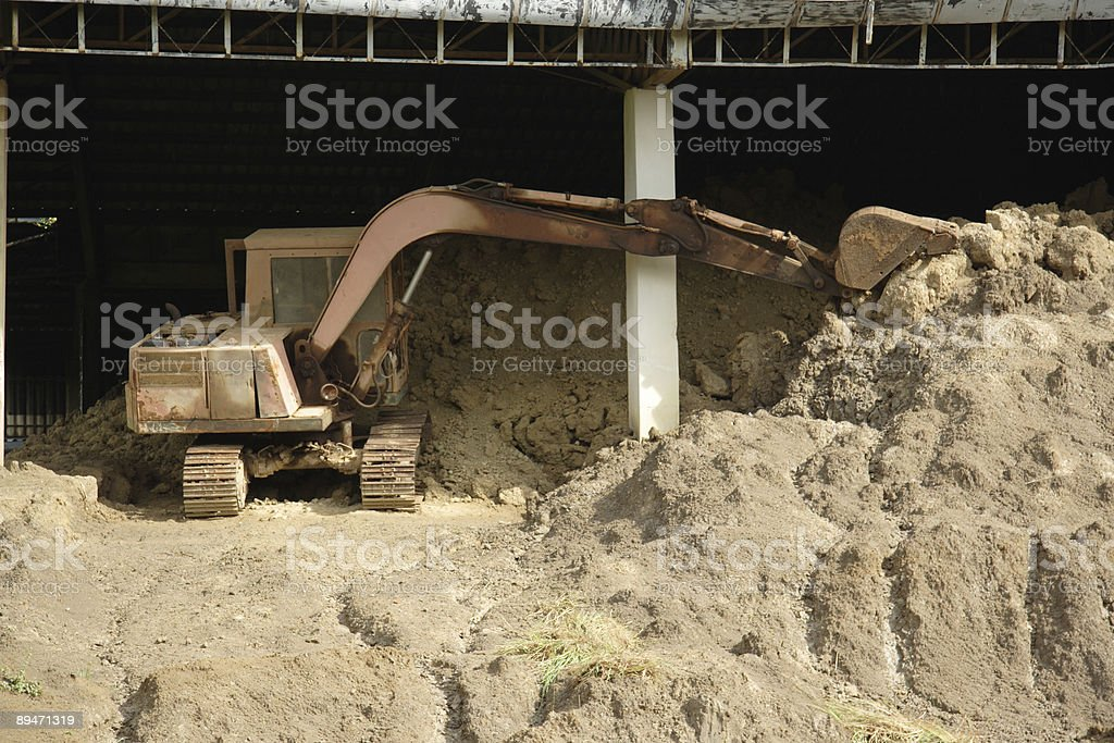 caterpillar stock photo