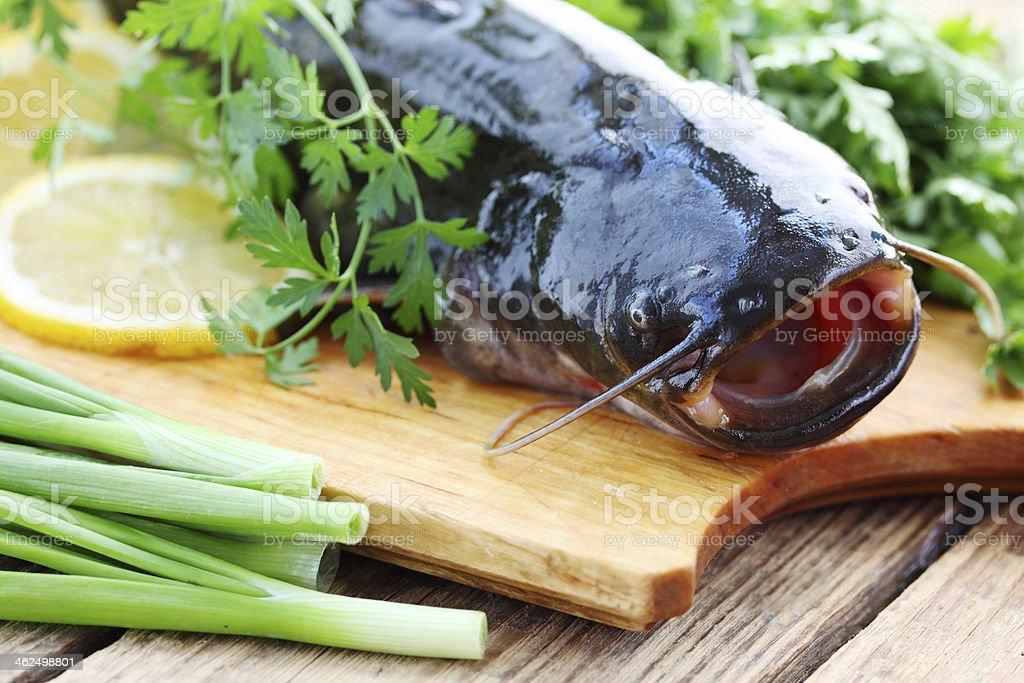 catfish with greens stock photo