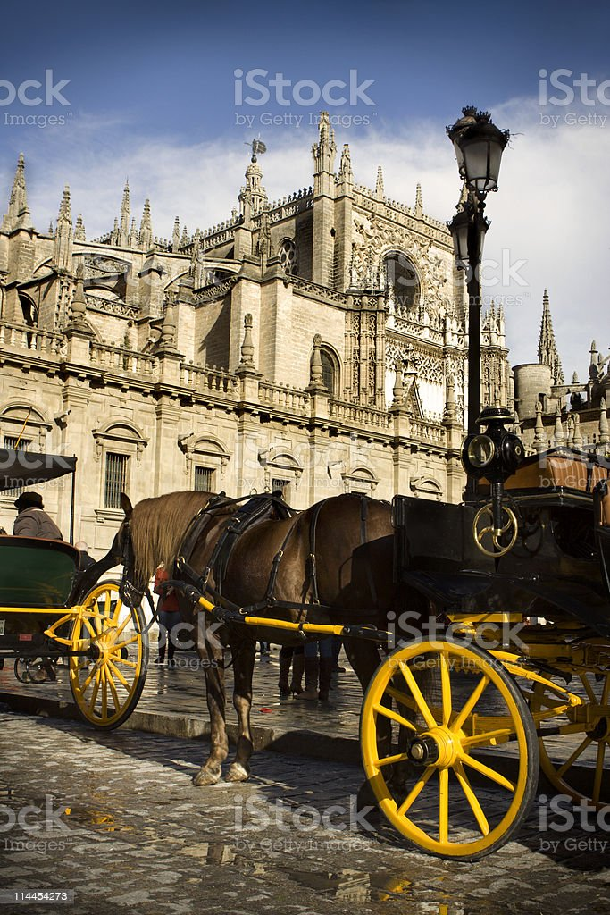 Cathedral and Carriages royalty-free stock photo