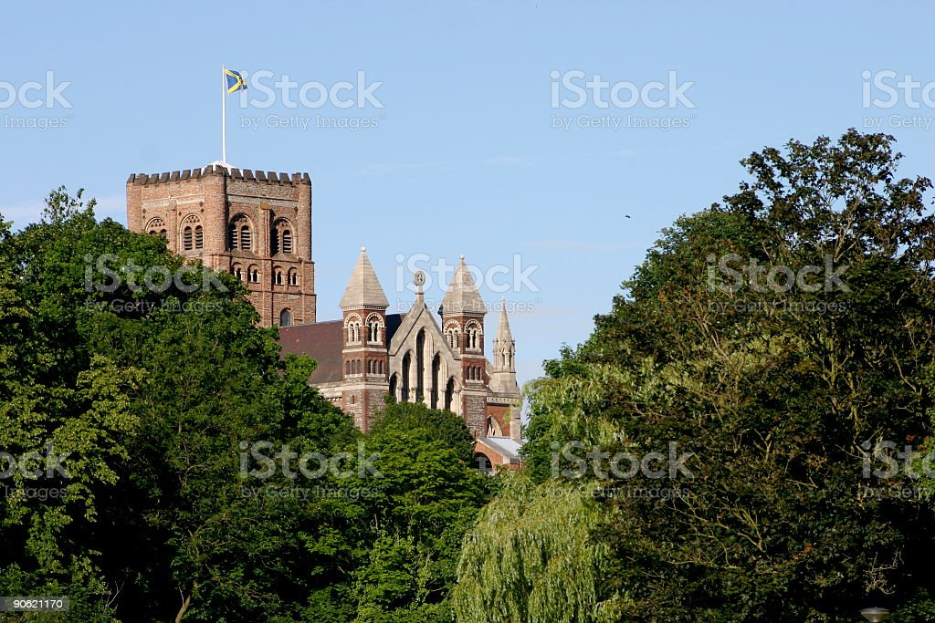Cathedral in the trees stock photo