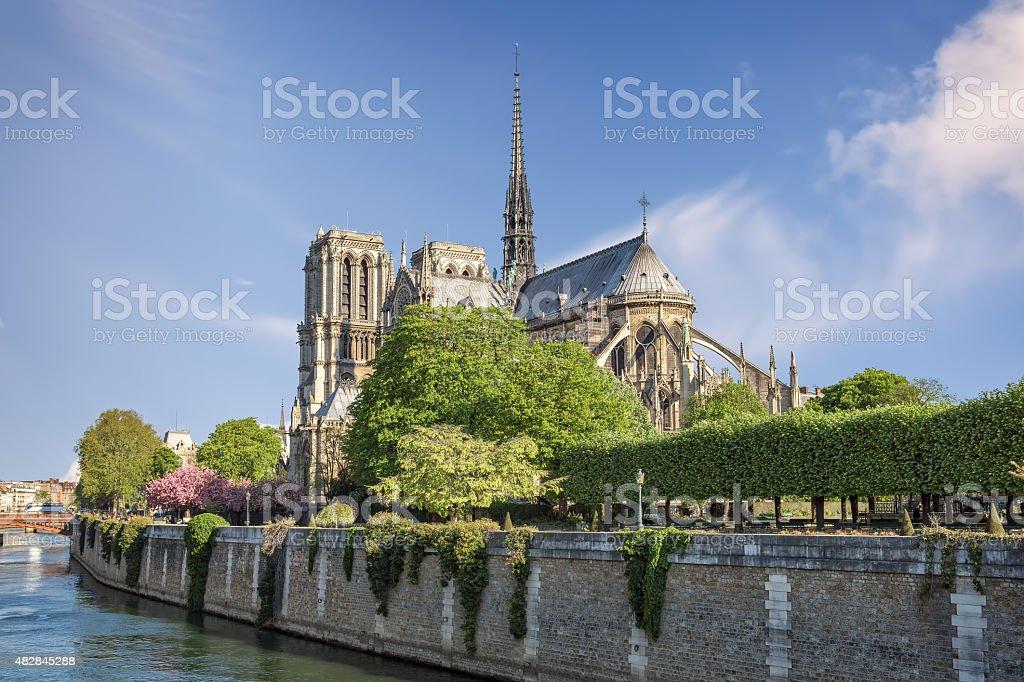 Cathedral Notre Dame de Paris stock photo
