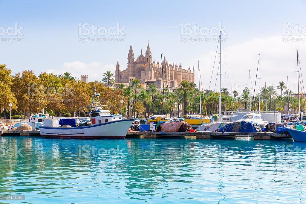 Cathedral of Majorca  La seu from Palma de Mallorca stock photo