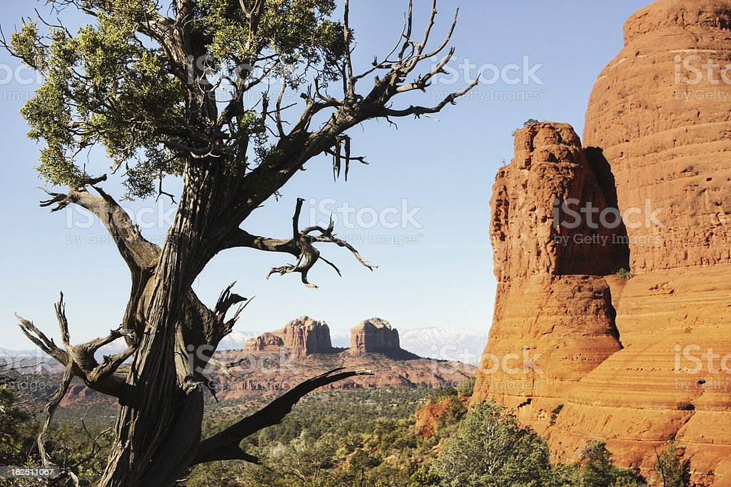 Cathedral Rocks Sedona Desert Butte royalty-free stock photo