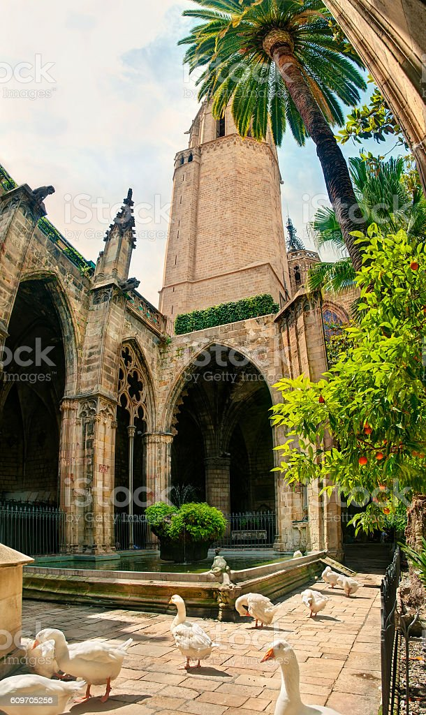 catholic cathedral courtyard with fountain and birds stock photo