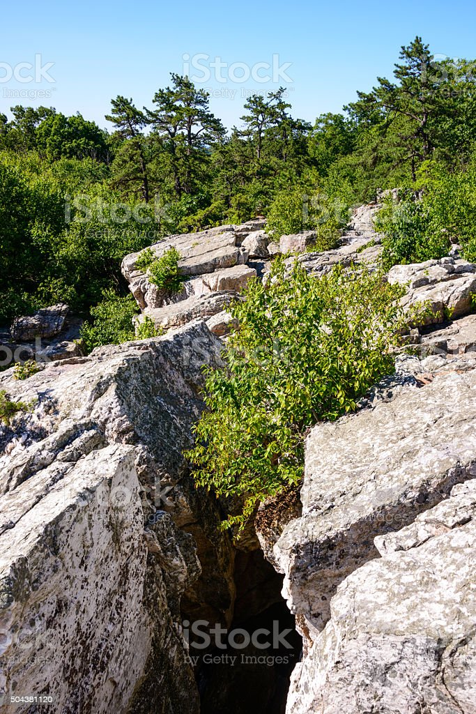 Catoctin Mountain Park stock photo