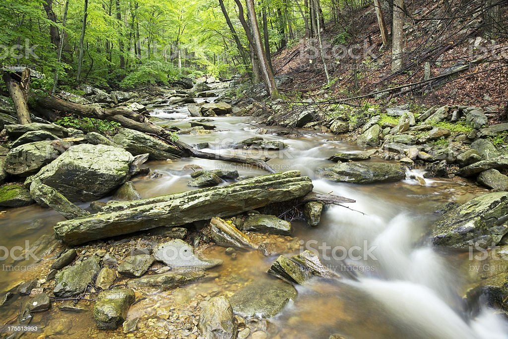 Catoctin Mountain Stream stock photo