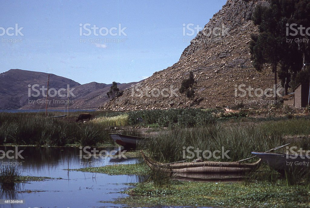 Cattails swamp shoreline and reed boat island Lake Titicaca Bolivia stock photo