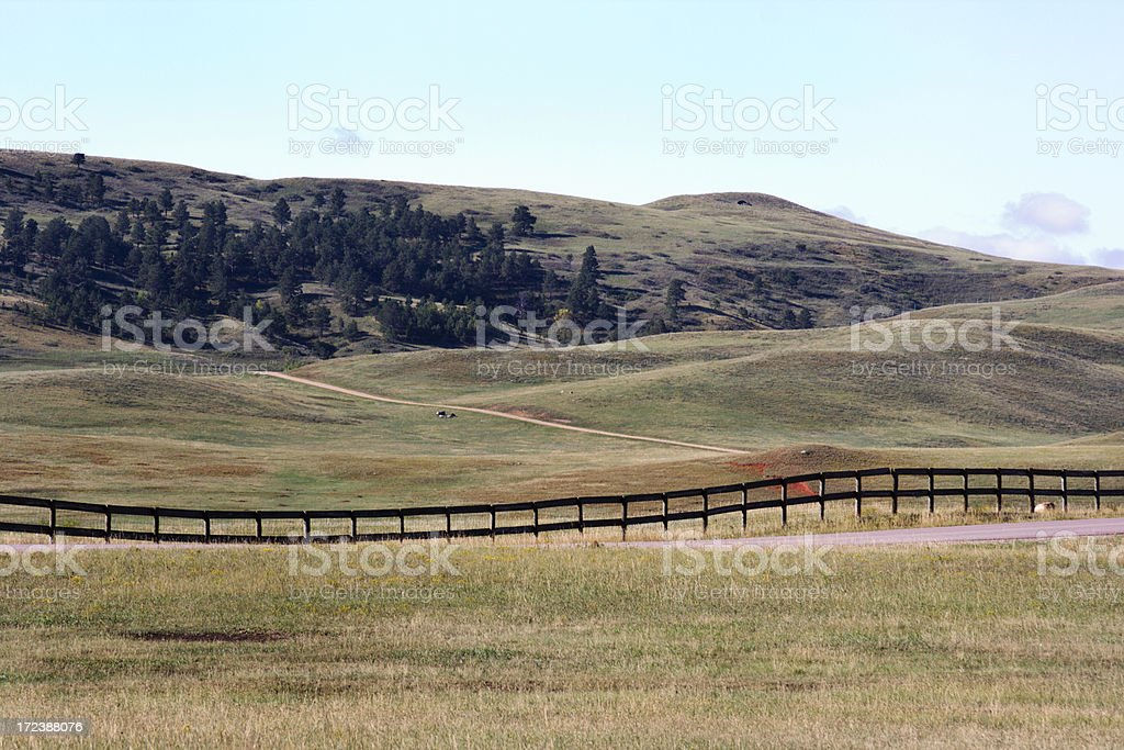 Cattle Country royalty-free stock photo
