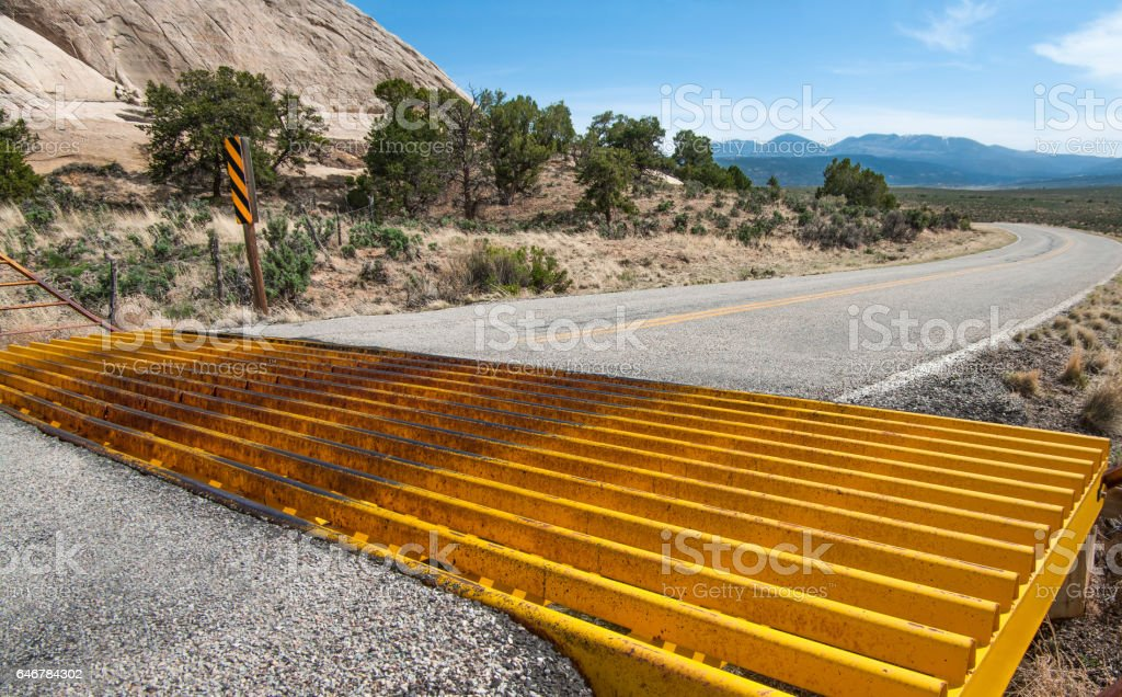 Cattle Guard stock photo