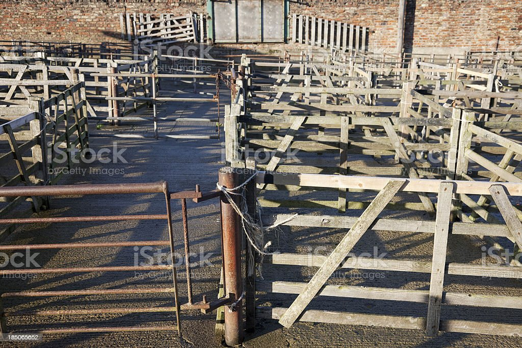 Cattle market holding pens stock photo
