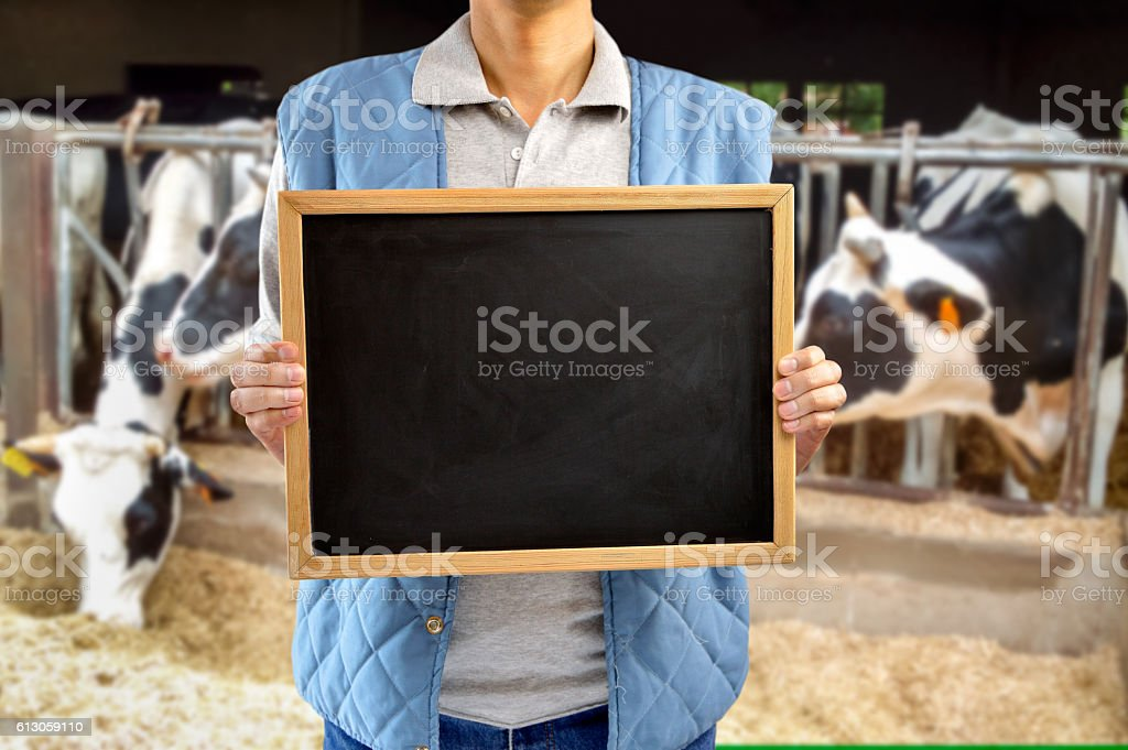 cattle rancher showing the blackboard stock photo