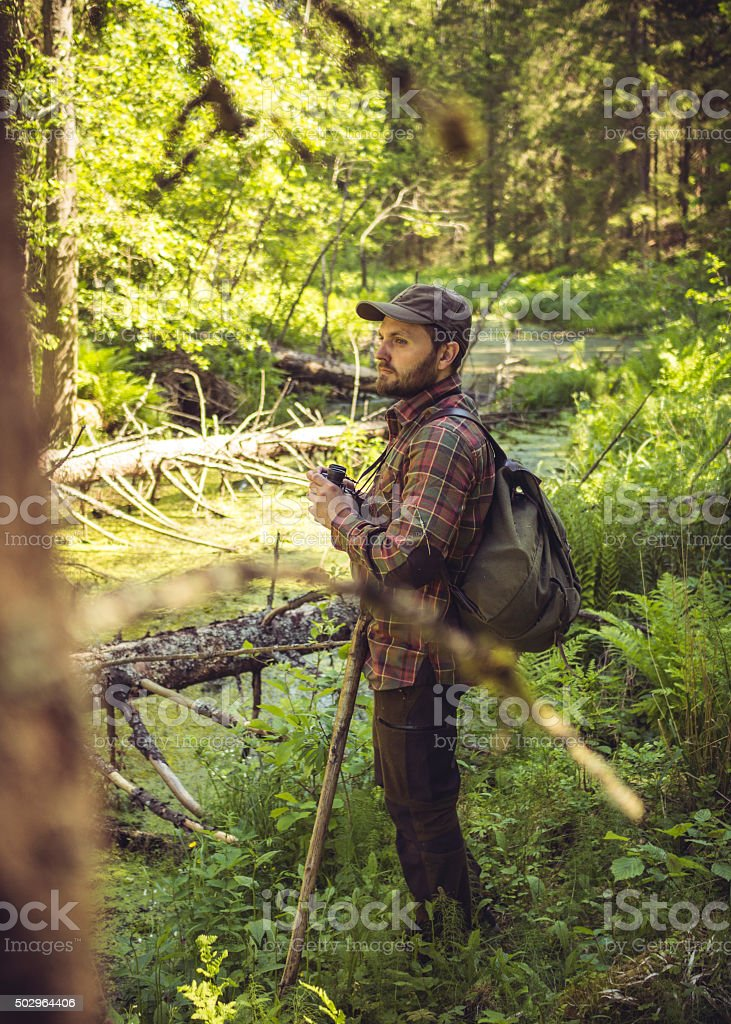Caucasian Hiker In A Sunlit Forest Swamp stock photo