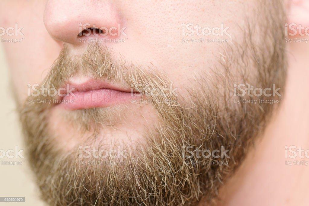Caucasian male with medium long beard close up stock photo