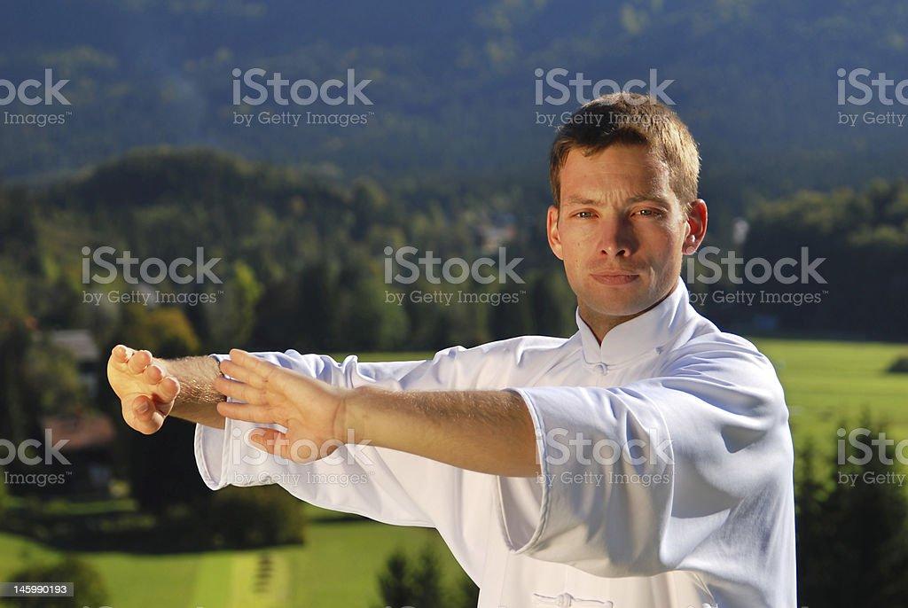 Caucasian Tai Chi Expert royalty-free stock photo