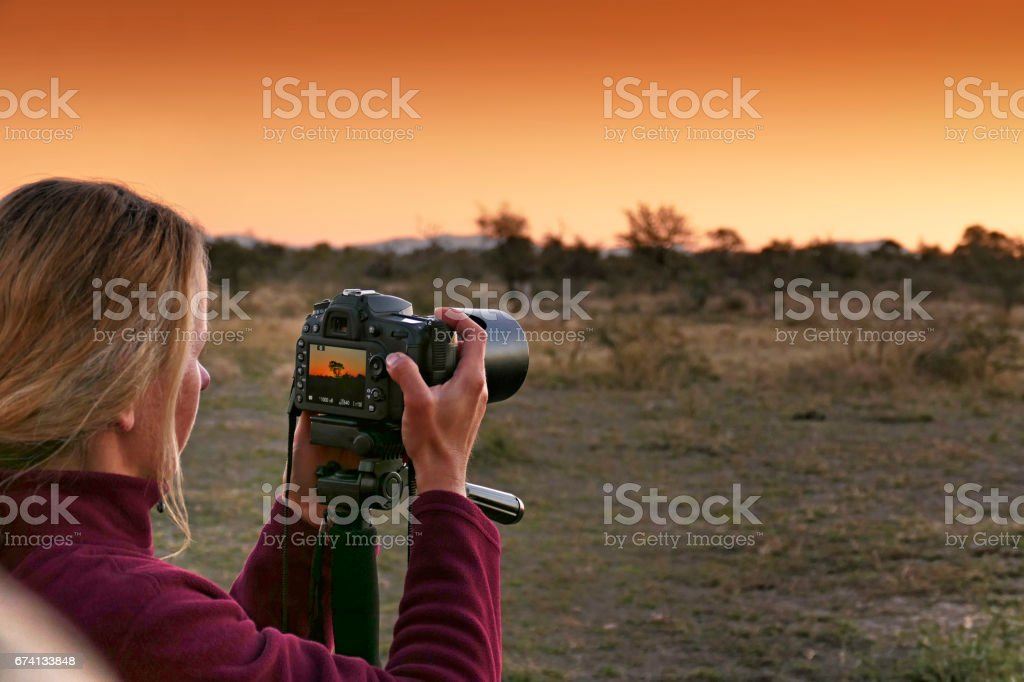 Caucasian woman taking pictures with a SLR camera during  safari trip in the Madikwe Game Reserve in South Africa stock photo