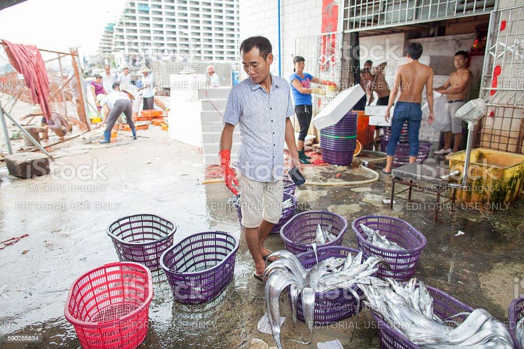 Caught fish in Sanya, Hainan Island stock photo