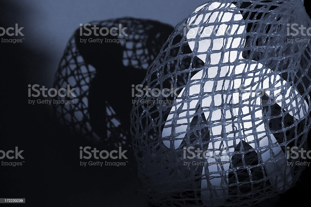 Caught in a net royalty-free stock photo