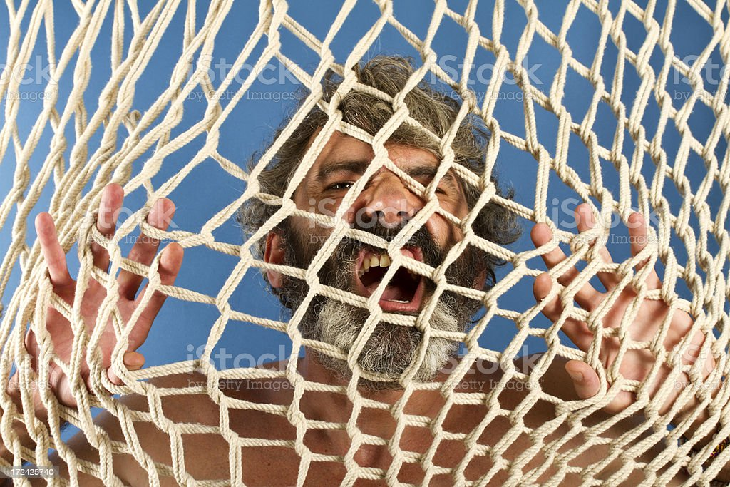 Caught in the net royalty-free stock photo