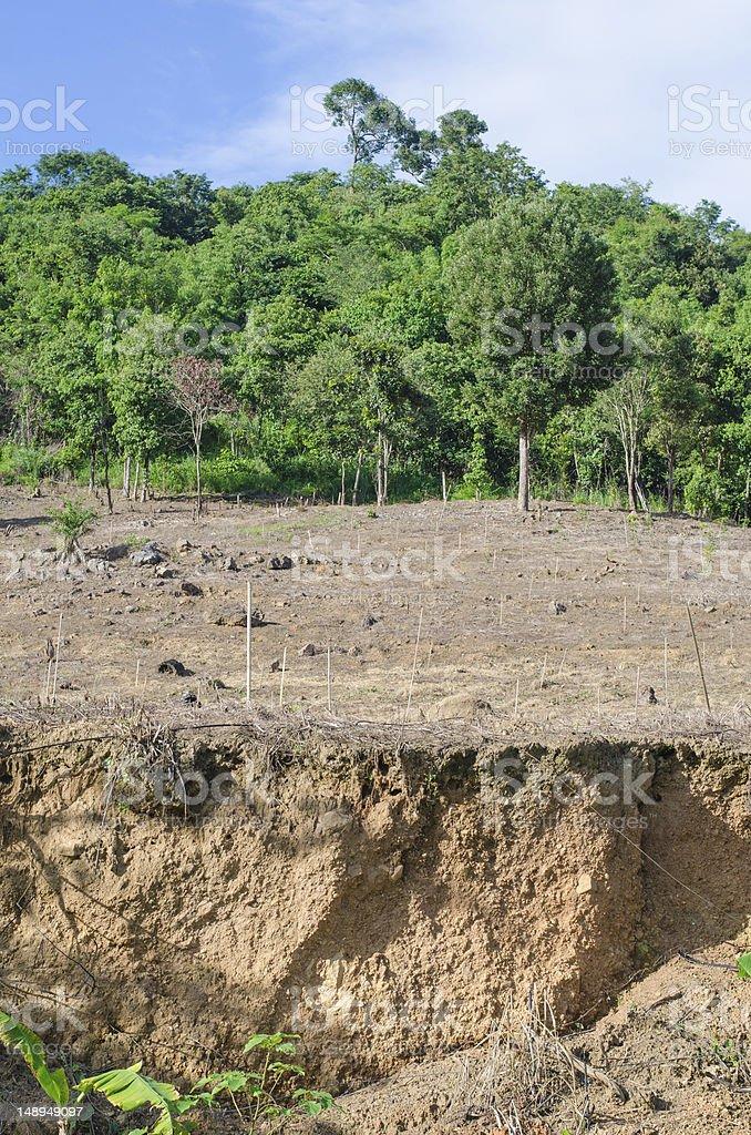 Cause landslides royalty-free stock photo