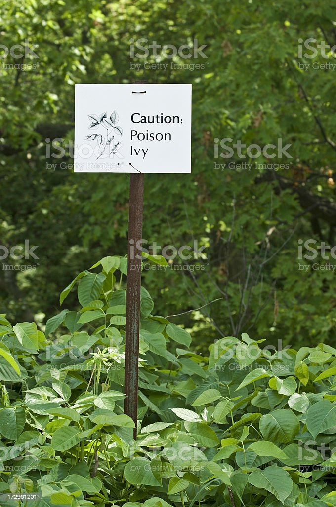 Caution: poison ivy royalty-free stock photo