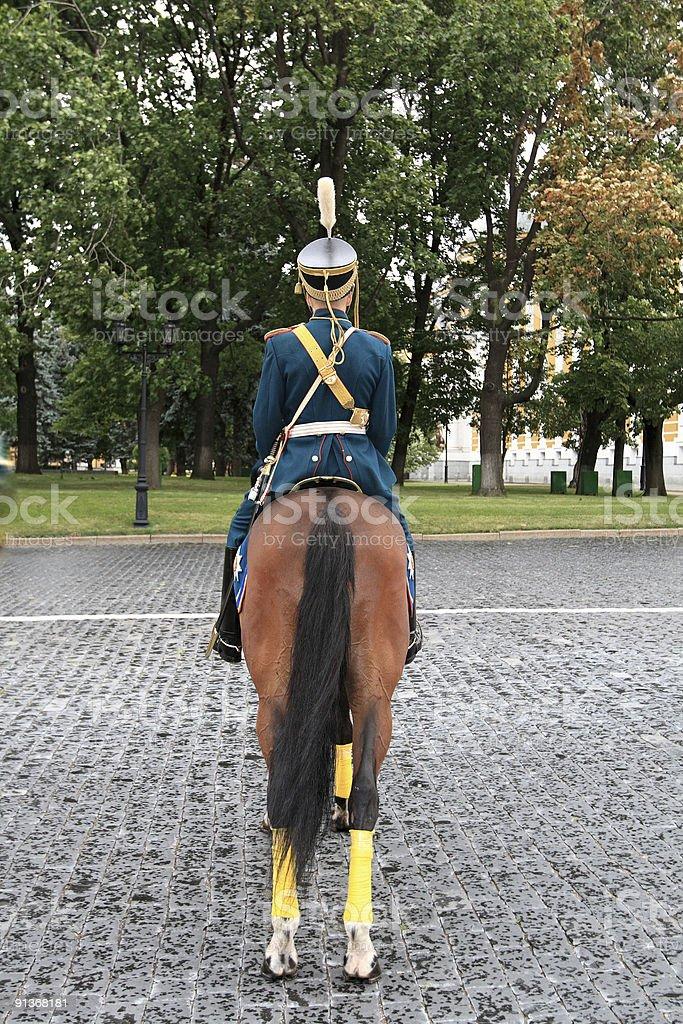 cavalryman on parade stock photo